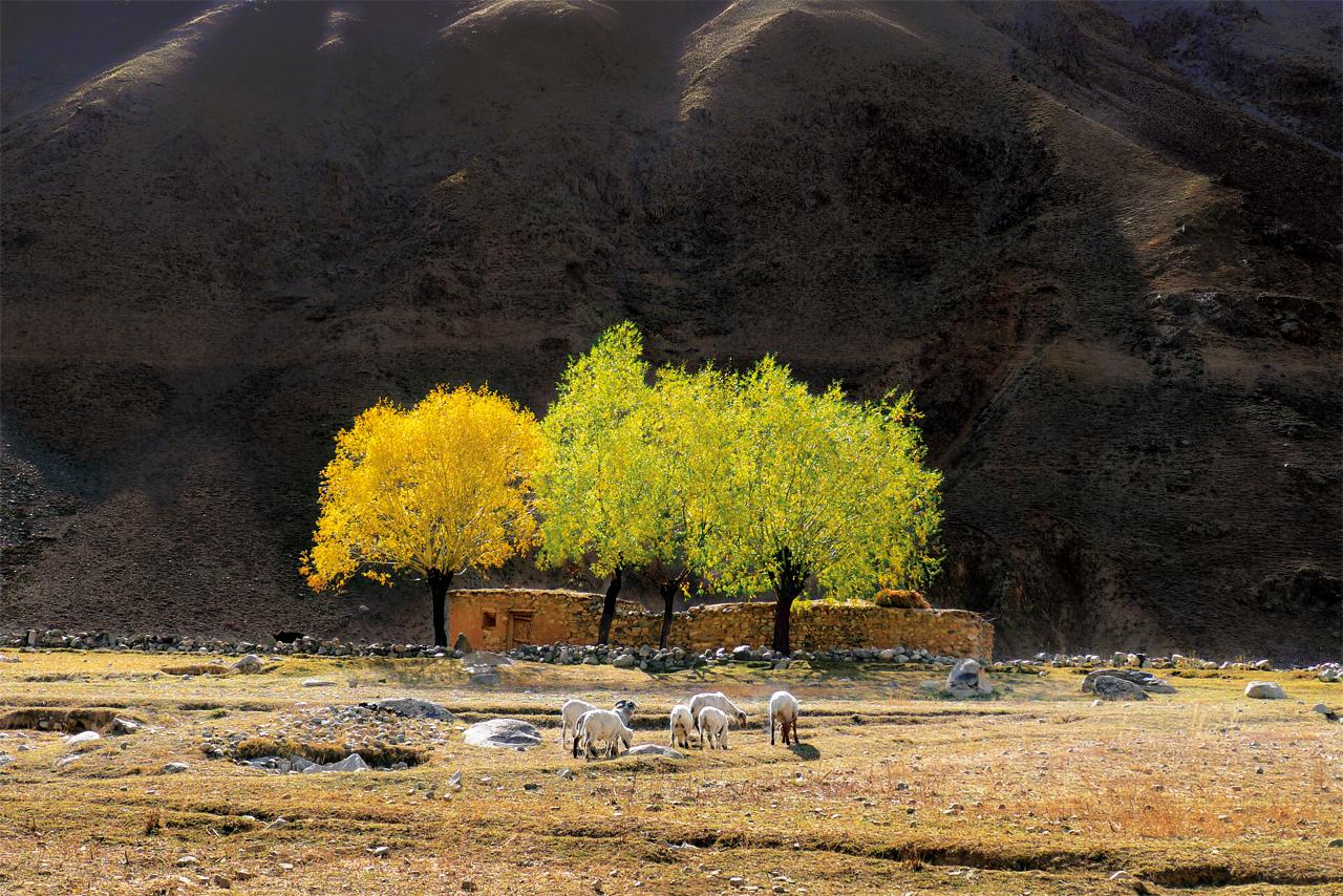 (2)Pakistan-37.jpg